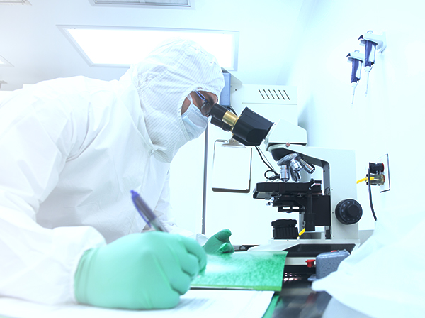 Biotechnology and Drug Development